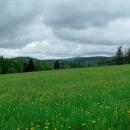 Kouzelné louky poblíž obce Šediviny, v dálce nejspíš Velká Deštná