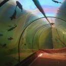 Tunel pod rybníkem