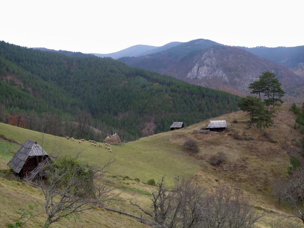 Ještě asi 1 km po hlavní a pak jsme odbočili do hor pohoří Tara. Silnička začala hnedka pěkně zostra stoupat a okolí bylo nádherné.