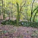 Při okružní trase kolem Bořeně jsme narazili na jakousi zeď, ale nepřišla jsem na to, k čemu sloužila.