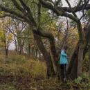 Šárka šťourala klackem ve stromě, až vyšťourala kešku