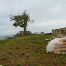 Mnoho toho z hradu nezůstalo. Ale očividně se tu kácelo a probíhá jakási rekonstrukce.