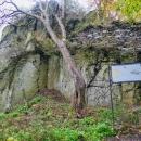 Zřícenina hradu Litýš - poslední dnešní kopec. Museli jsme si ovšem popojet autem, už se stmívalo,