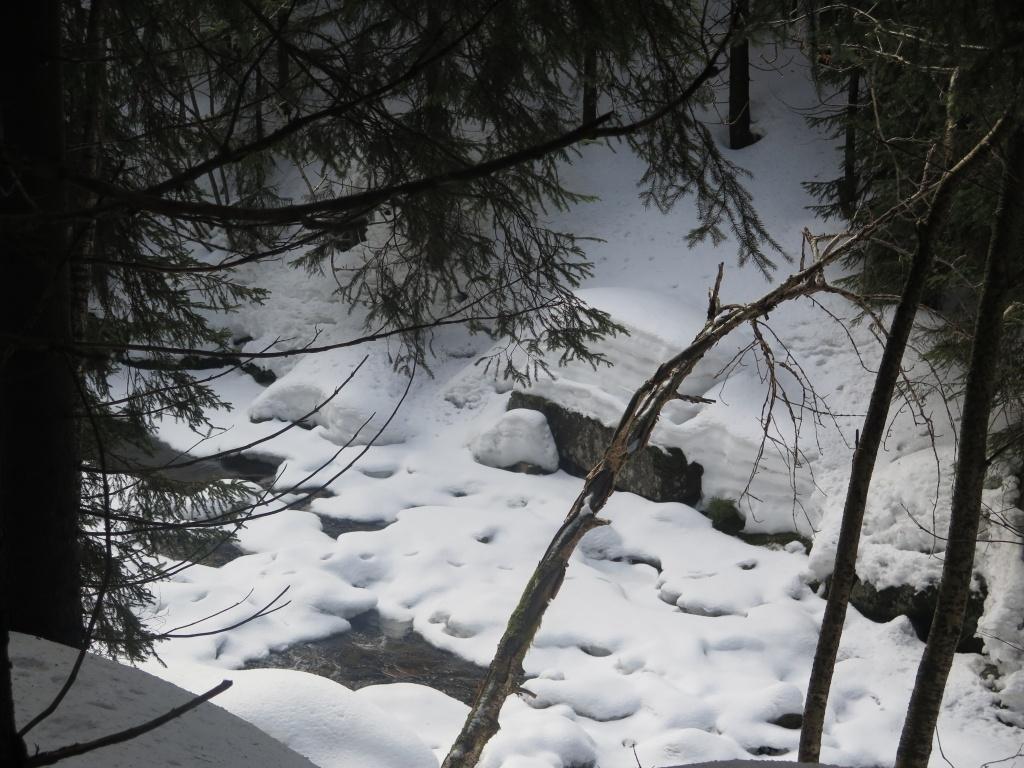 O množství sněhu netřeba si dělat obavy