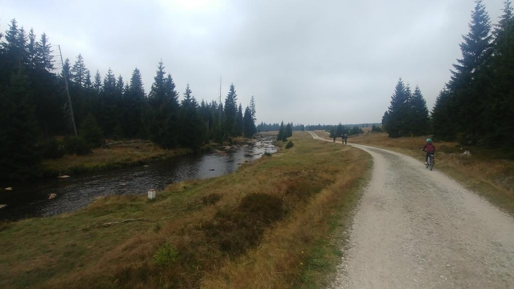 Řeka Jizera protéká loukou Hala Izerska, a tohle místo patří k nejhezčím v celých Jizerkách