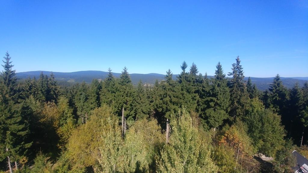 ... pravda je, že už Slovanku stromy přerůstají víc než Bramberk, ale to nevadí, do sbírky jsme ji přibrali rádi. A pak už jsme opravdu jenom sjeli přes Josefáč do Albrechtic, kola naložili do auta a odjeli zpátky domů. A zazvonil zvonec a výletu byl konec :-)