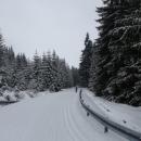 Soušská silnice je v zimě pro auta uzavřená, pro běžky je naopak otevřená. Víťa se drží v čele.