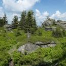 Pěšinka vede mezi skalami a je to tady pěkné a divoké
