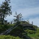 Holubník (1071 m), Šárka už tam dávno je :-)