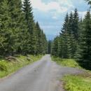 Cesta na Smrk, nazvaná Smrková cesta. V dáli za námi Krkonoše