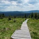 Čím blíž k vrcholu, tím se cesta narovnává a vede po dřevěných chodníčcích.