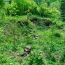Hrad vznikl nejspíše ve 13. století a zanikl během husitských válek. Do dnešní doby se zachovaly hrubý půdorys hradu a příkop.