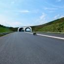 Tunel na nové dálnici. Je tak nová, že ještě není ani na mapě.