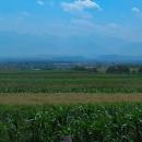 Vrcholky pohoří Retezat najednou vystoupily z oparu jako neprostupná zeď.