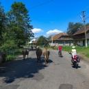 I na Ukrajině se po silnici procházejí krávy a ten kluk na kole docela machroval před Šárkou. Myslím, že by mu to v kopci pěkně nandala :-)