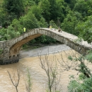 Tamara Bridge
