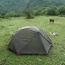 Ráno od našeho tábořiště odháněl zvědavé krávy.