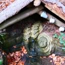 Lesní studánka s pitnou vodou cestou na Litice