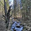 Po Víťově lekci matematiky vyrážíme údolím řeky Moravy
