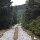 Poslední zbytky sněhu na úbočí hory cca 1100 m vysoko. Doufám, že už fakt poslední!!!