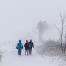 Fučák na hřebenovce u rozhledny Val - sněžilo vodorovně