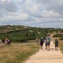 Cestu si maličko prodlužujeme přes Harrachovy kameny. Je sobota, relativně slunečno, do hor se vydalo spousta lidí.