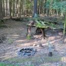 Opodál bylo ještě jedno tábořišťátko - nazvané Vzdušné kořeny, ale na spaní žádné rovné místo. Mohli jsme ale prozkoumávat stavbu kořenů smrků.