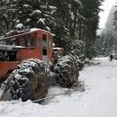 Stopy při této sněhové nadílce nikdo neupravil (pro koho taky), spíš jsou poničeny lesní technikou.