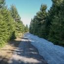 Poslední sníh na cestě, v lese ho na severních stráních bylo ještě docela dost