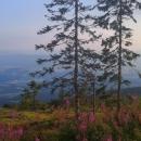 Výhled od útulny Líška na údolí Hronu a kopce Slovenského Rudohoří. Klenovský Vepor nalevo, Poľana napravo.
