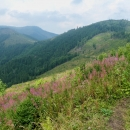Putování nebylo nijak náročné, většina vrcholů se podcházela, trasa nevede vyloženě po hřebeni.