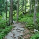 Chodník dlážděný z kamenů zbudovaný v roce 1925 se kroutil vzhůru...