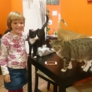 A protože jsme v Brně byly brzy a Jára s Janou ještě trčeli v práci, naplánovala jsem pro Šárku překvapení. Naši milovnici koček jsem vzala do kočičí kavárny Envi Café :-)