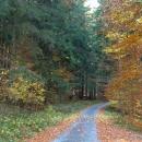 Podzimní cesta na Lesní bar, v minulosti jsme ji absolvovali hlavně s lyžema