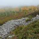 Na úpatí nízké vyvýšeniny jménem Brousek (1115 m), kterou děti a Luděk rádi v zimě sjíždějí na lyžích, se nachází miniaturní suťové pole