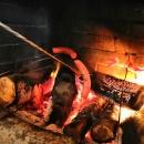 Než člověk k Lesnímu baru vystoupá, dostane hlad :-)
