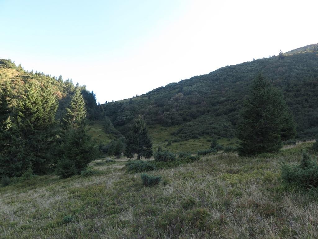 Konečně jsme z pralesa vylezli na louce a shlíželi na to, co máme za sebou (prolezli jsme celý ten svah napravo kolmo dolů). Jasně že tam nahoře žádné vyšlapané pěšinky nebyly. Možná jsme první, kdo se tímhle roštím prodral. A vlevo byla ta dolina s vodopádem.