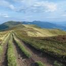 Výhled na Bukovskou poloninu z kopců nad sedlem (pravděpodobně jde o vrch Behar, 1226 m)