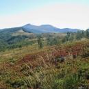 Vyšli jsme z lesa na sedle Orłowicza a tohle jsme uviděli. Nejvyšší bod poloniny, hora Roh 1255 metrů.