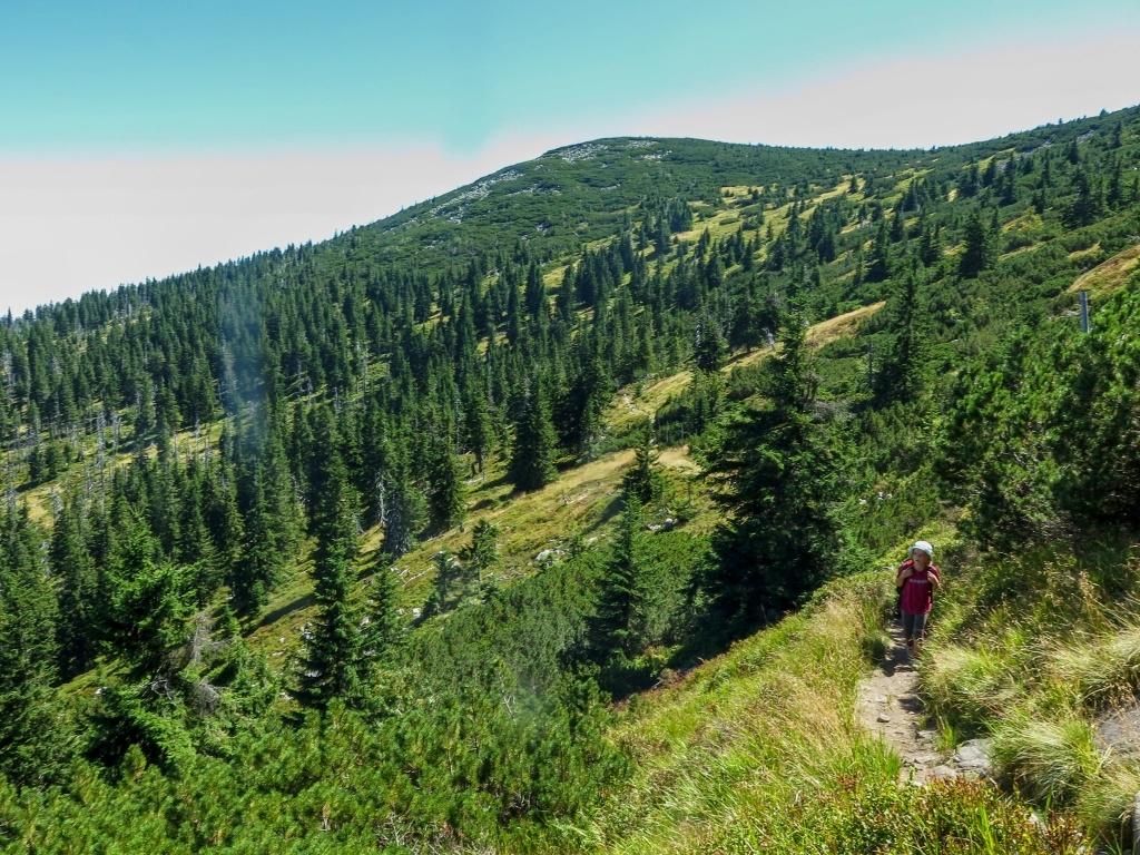 ... ale jinak je těch asi pět kilometrů celkem nekonečných a neubíhá to tak, jak by si člověk představoval.