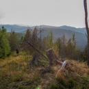 Krajina Volovských vrchů. Hory všude okolo. Budete toužit jít po nich dál, přejít je celé. Tento den jsme ušli přes 30 kilometrů...