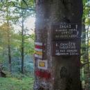 Asi 250 metrů od pramene se nachází parádní tábořiště.