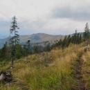 Abychom se nemuseli vracet zpět na hřeben po stejné trase, volíme žlutý traverz do sedla Volovec.