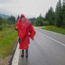 A vydali se vstříc Stolickým vrchům. A přeci těch 5 km po silnici nepůjdeme pěšky, navíc v dešti. Zkoušíme stopovat!
