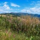 Krajinka Slovenského Rudohoří 2020 - po stromech už není moc památek, ale zase jsou výhledy. Ráno jsme na tyto kopce koukali z větší dálky, trochu se přiblížily.