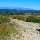 Já a výhledy. Nebojte, už to končí. Cesta se přehoupla přes hřeben hory Stromiš a začala klesat do sedla Súľová.
