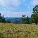 Krajinka na zelené hřebenovce