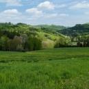 Svěží jarní zelená