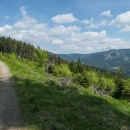 """Od rozcestí """"Pod Klepáčem"""" už jedeme po lesní cestě. Je značená jako cyklo, tudíž zatím docela slušná. Napravo je jako čára krásně vidět vrstevnicová cesta, kterou jsme letos v zimě projeli na běžkách"""