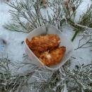 Oběd v borůvčí